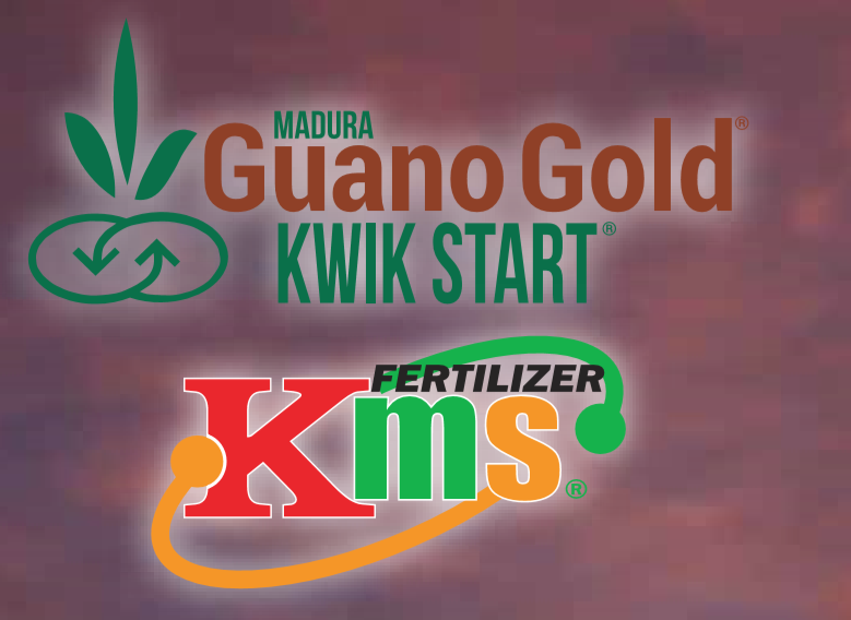MADURA GUANO GOLD
